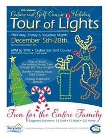 Tour Lights Flyer Color.jpg